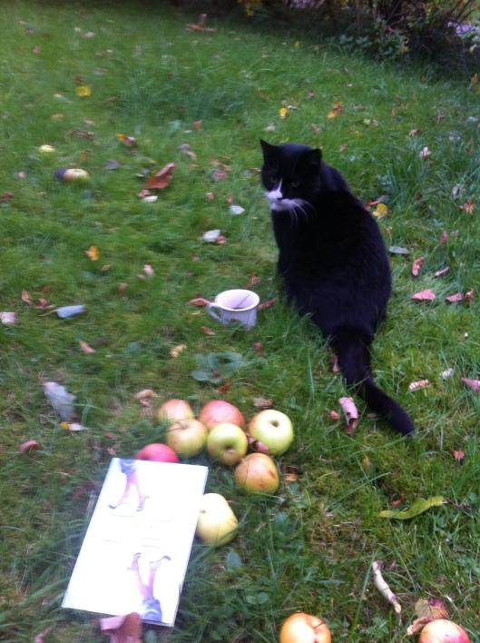 O'mally og eplene