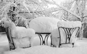 snowgarden2